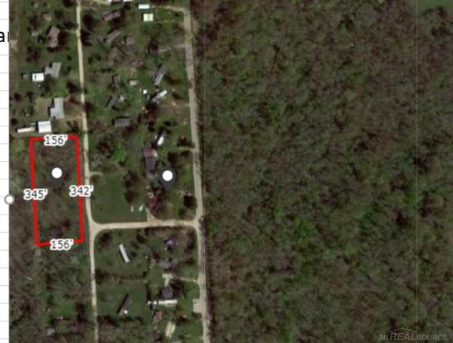 Birch, Port Hope, MI 48468 (MLS #50055384) :: Kelder Real Estate Group