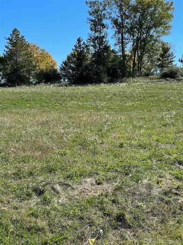 67736 Overlook Trail, Washington Twp, MI 48094 (MLS #50057063) :: Kelder Real Estate Group