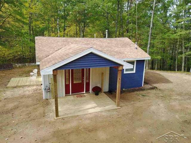 10930 S Lake Station Ave, Lake, MI 48632 (MLS #50057943) :: Kelder Real Estate Group