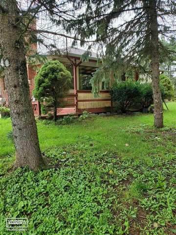 2627 Reeves Rd., Memphis, MI 48041 (MLS #50058170) :: Kelder Real Estate Group