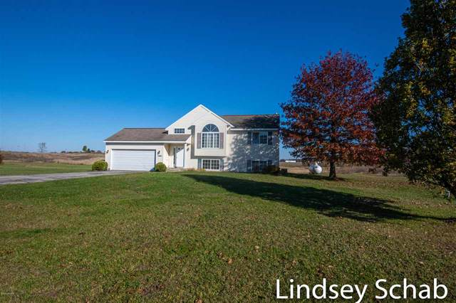 23882 Ashley Court, Pierson, MI 49339 (MLS #20045389) :: The Tom Lipinski Team at Keller Williams Lakeside Market Center
