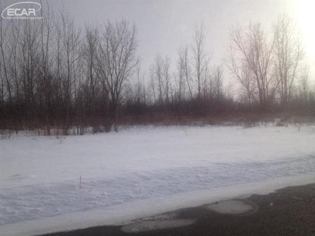 1402 Sunset, Flint, MI 48507 (MLS #2299911) :: The John Wentworth Group