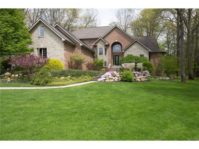 668 Mystic Woods Dr, Howell, MI 48843 (MLS #217054096) :: The John Wentworth Group