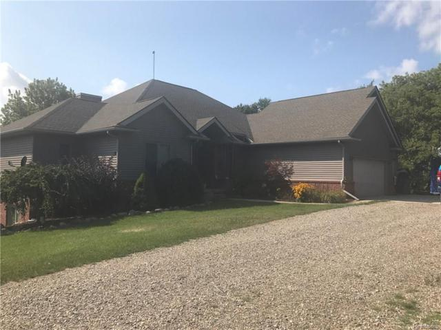 3905 N Latson Rd, Howell, MI 48855 (MLS #217074706) :: The John Wentworth Group