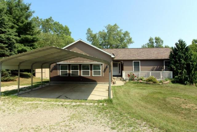 5545 Lakeview Blvd, Goodrich, MI 48438 (MLS #218078345) :: The John Wentworth Group