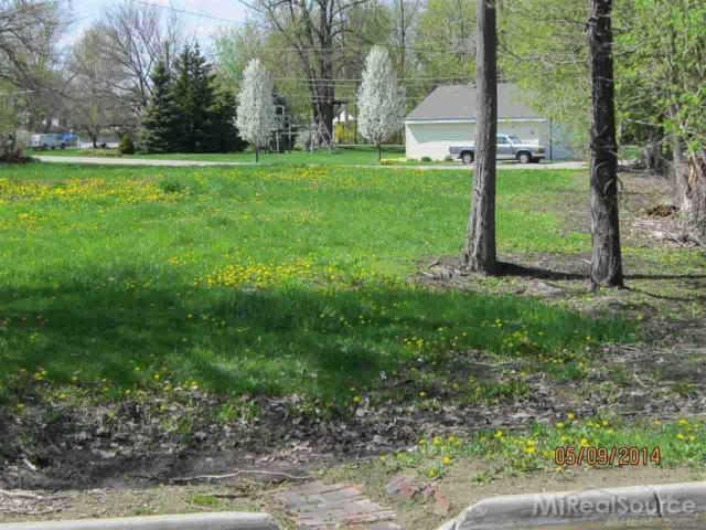 00000 Clintonview, Harrison Twp, MI 48045 (MLS #31249147) :: The John Wentworth Group