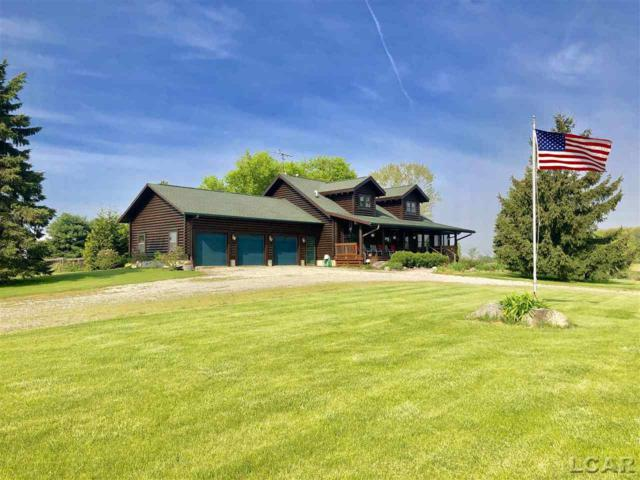 8450 Acker Hwy, Hudson, MI 49247 (MLS #31380381) :: The Tom Lipinski Team at Keller Williams Lakeside Market Center