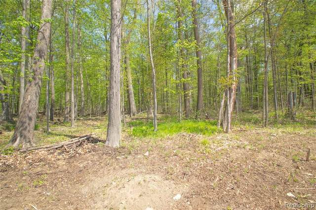5738 Black Oak Dr, Troy, MI 48085 (MLS #2210033249) :: The BRAND Real Estate