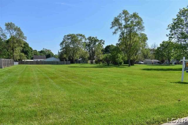 808 Huron, Tecumseh, MI 49286 (MLS #50036524) :: The BRAND Real Estate