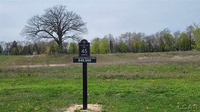 739 Eagle View Way, Tecumseh, MI 49286 (MLS #50039169) :: The BRAND Real Estate