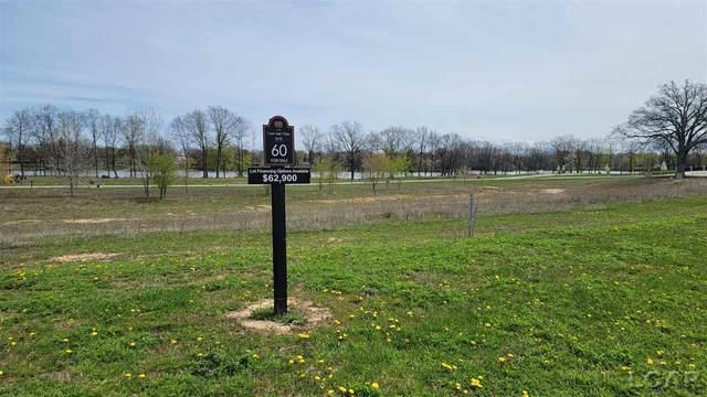 746 Lone Oak Way, Tecumseh, MI 49286 (MLS #50039171) :: The BRAND Real Estate