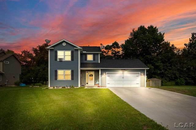 3573 Willow Nicole, Adrian, MI 49221 (MLS #50047855) :: Kelder Real Estate Group