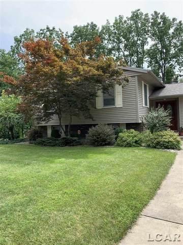 2804 Lee Marie Dr, Adrian, MI 49221 (MLS #50048785) :: Kelder Real Estate Group