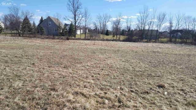14007 Tupper Lake Drive, Linden, MI 48451 (MLS #30062945) :: Kelder Real Estate Group