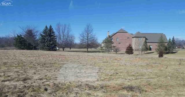 14008 Tupper Lake Drive, Linden, MI 48451 (MLS #30063007) :: Kelder Real Estate Group