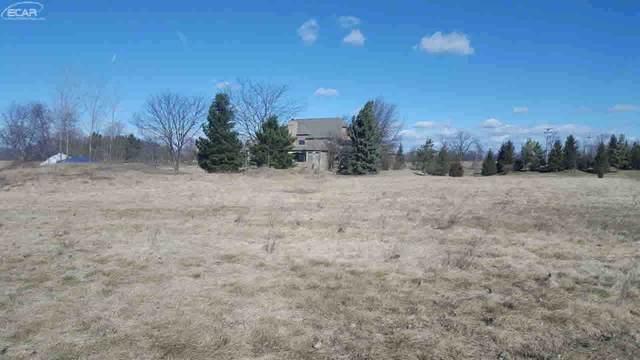 14040 Tupper Lake Drive, Linden, MI 48451 (MLS #30063190) :: Kelder Real Estate Group