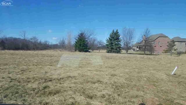 14016 Tupper Lake Drive, Linden, MI 48451 (MLS #30063075) :: Kelder Real Estate Group