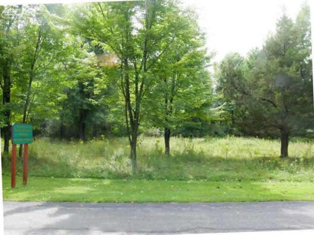 0 Arrowhead Drive 1-A, Chesaning, MI 48616 (MLS #2298631) :: The John Wentworth Group