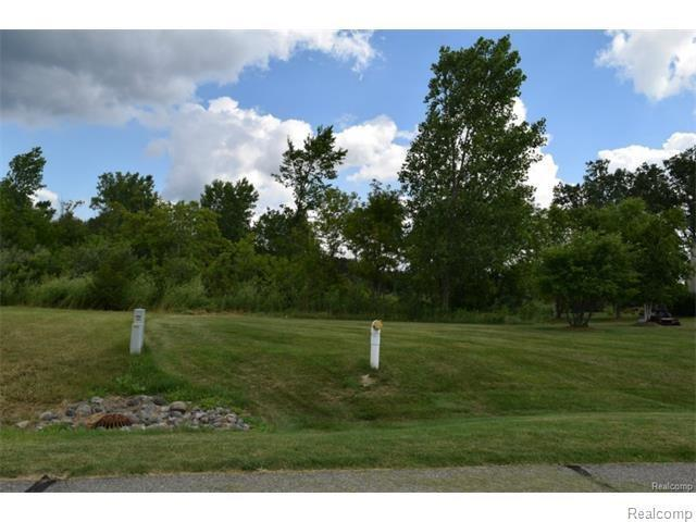 6095 Whispering Meadows Drive, White Lake, MI 48383 (MLS #217074162) :: The Tom Lipinski Team at Keller Williams Lakeside Market Center