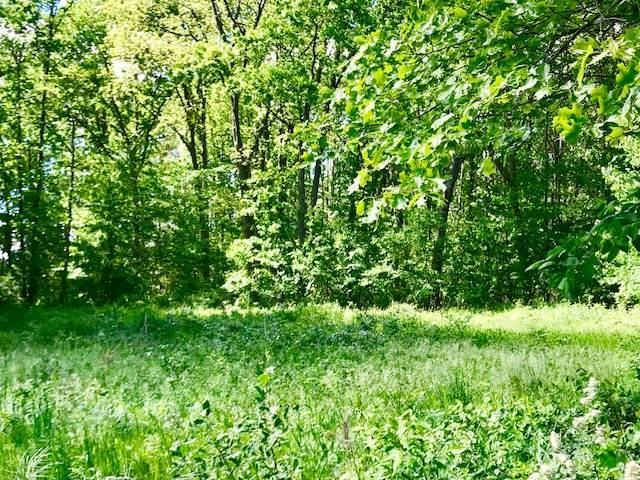 Eaglehurst Dr Lot 150, Jerome, MI 49249 (MLS #201800233) :: The Tom Lipinski Team at Keller Williams Lakeside Market Center