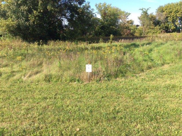 Bentwood Dr 98,Lot 1, Jackson, MI 49201 (MLS #201800563) :: The John Wentworth Group