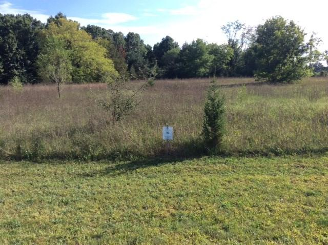 Bentwood Dr 116,Lot 10, Jackson, MI 49201 (MLS #201800586) :: The John Wentworth Group