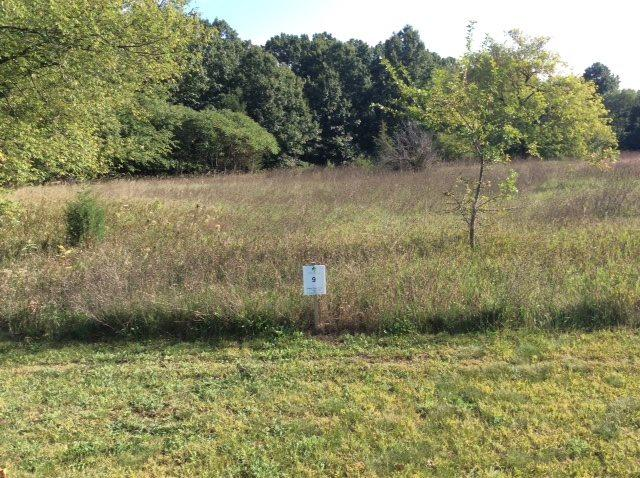 Bentwood Dr 114,Lot 9, Jackson, MI 49201 (MLS #201800585) :: The John Wentworth Group