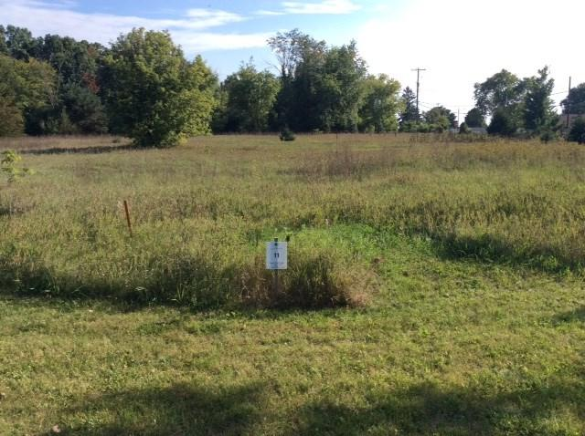 Bentwood Dr 118,Lot 11, Jackson, MI 49201 (MLS #201800587) :: The John Wentworth Group