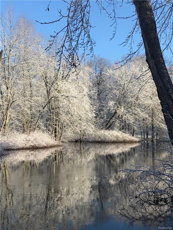 0 Mccaslin Lake Rd, Linden, MI 48451 (MLS #218021566) :: The John Wentworth Group