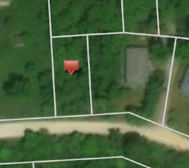 0 Great Lakes, Holly, MI 48442 (MLS #100003646) :: The John Wentworth Group