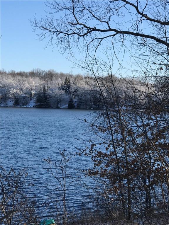 0 Mccaslin Lake Rd, Linden, MI 48451 (MLS #218115895) :: The John Wentworth Group