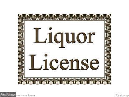 Liquor License Only, Port Huron, MI 48060 (MLS #219021787) :: The Tom Lipinski Team at Keller Williams Lakeside Market Center