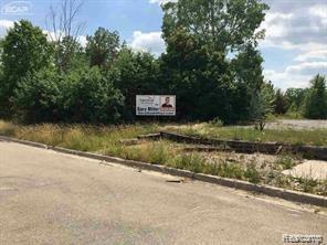 4405 Pierson Rd, Flint, MI 48504 (MLS #219035143) :: The Tom Lipinski Team at Keller Williams Lakeside Market Center
