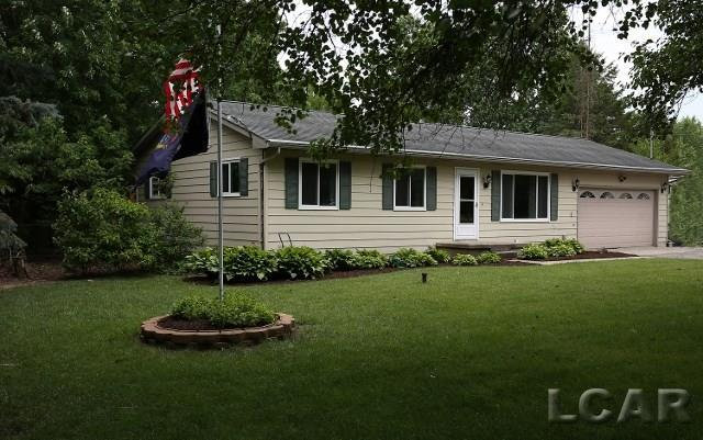 5243 Osburn Dr, Tecumseh, MI 49286 (MLS #31323547) :: The Tom Lipinski Team at Keller Williams Lakeside Market Center