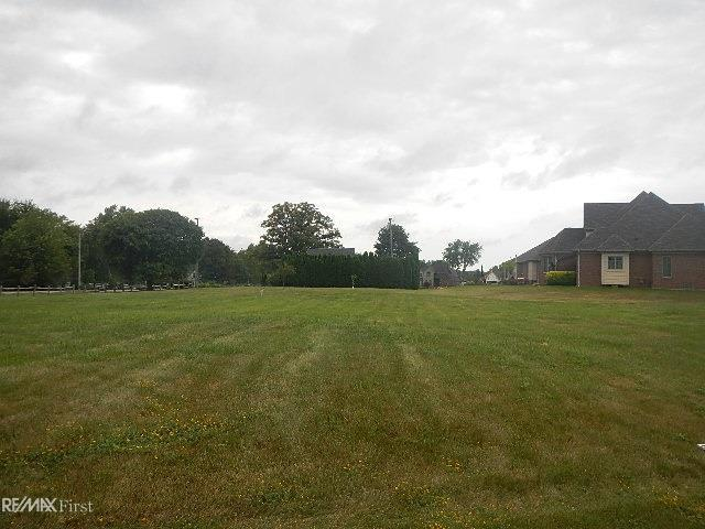 5 Old Course, Saint Clair, MI 48079 (MLS #31329168) :: The Tom Lipinski Team at Keller Williams Lakeside Market Center
