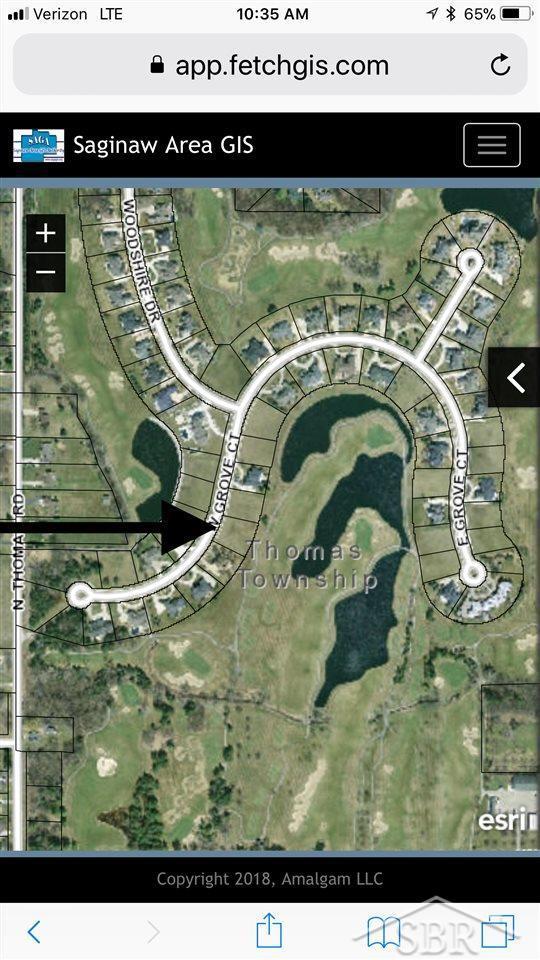 30 W Grove, Freeland, MI 48623 (MLS #31357645) :: The John Wentworth Group