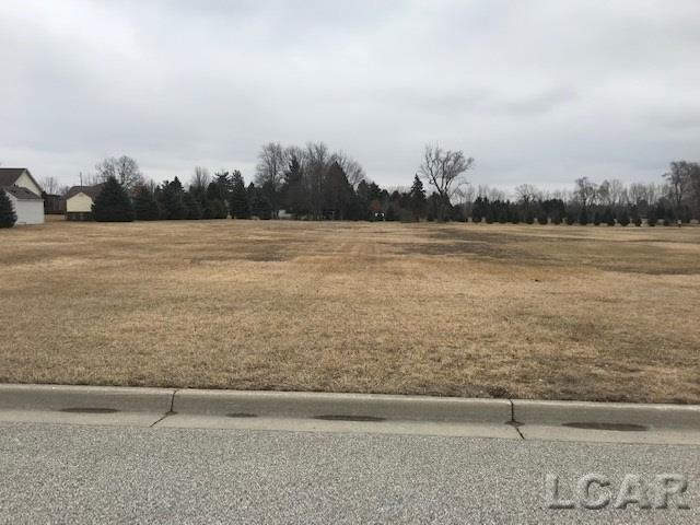 Silver Creek Dr Lot 9 - Photo 1