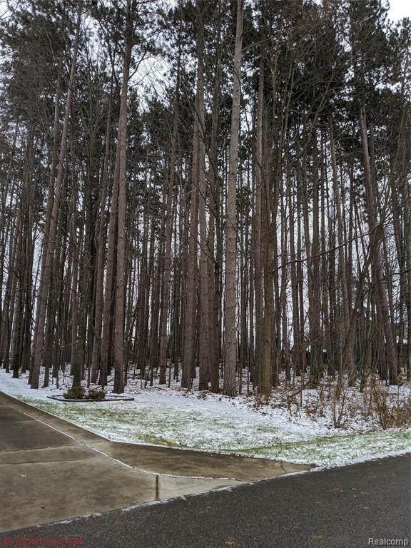 15151 Murray Woods Crt - Photo 1
