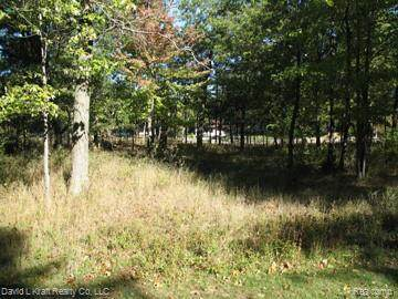 9700 Lost Channel Dr, Sand Point, MI 48755 (MLS #2200027562) :: The BRAND Real Estate