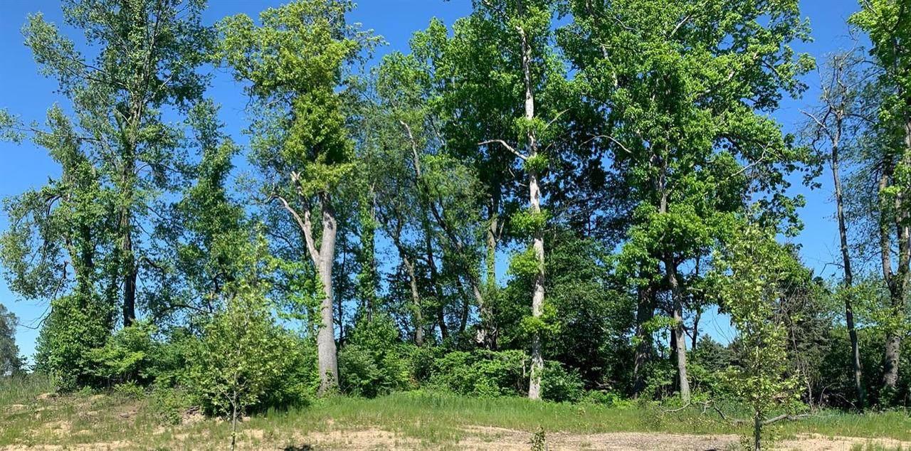 5 Charter Oak Ln - Photo 1