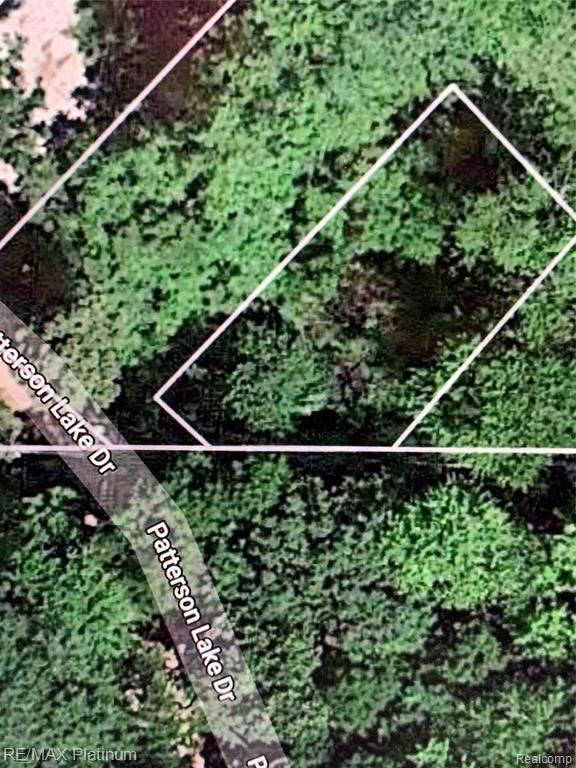 000 Patterson Lake Dr, Pinckney, MI 48169 (MLS #2210025445) :: Kelder Real Estate Group