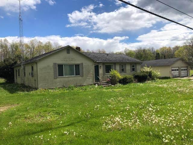 5549 Macon Hwy, Tecumseh, MI 49286 (MLS #202101343) :: The BRAND Real Estate