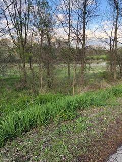 4702 Whitman Cir, Ann Arbor, MI 48103 (MLS #3280890) :: The BRAND Real Estate