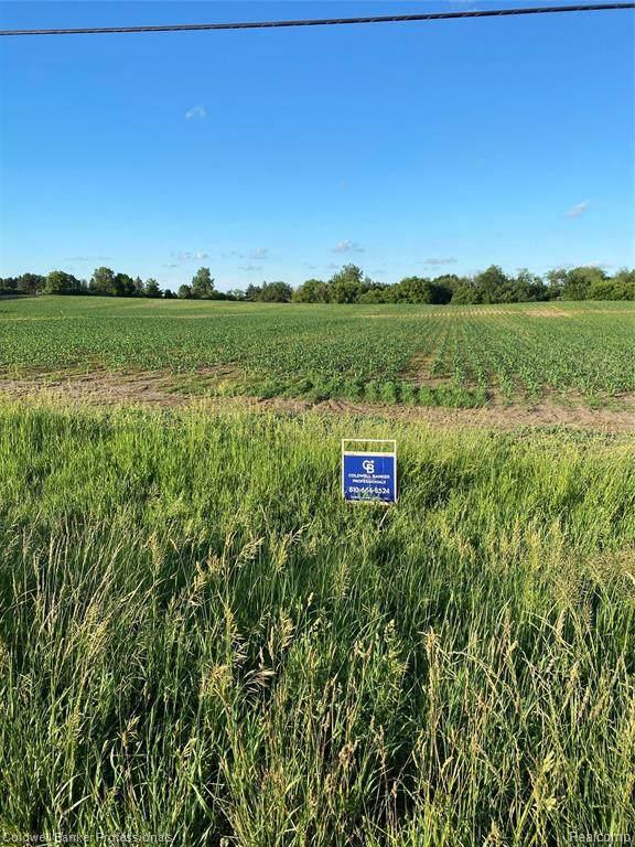 00 N Van Dyke Rd, Imlay City, MI 48444 (MLS #2210045304) :: Kelder Real Estate Group