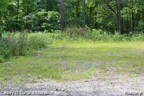 000 Gardenia, Highland, MI 48380 (MLS #2210045954) :: Kelder Real Estate Group