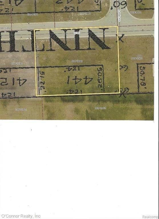4710 9TH ST, Smiths Creek, MI 48074 (MLS #2210046529) :: Kelder Real Estate Group
