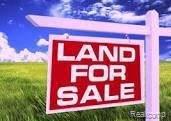 10854 Allen, Taylor, MI 48180 (MLS #2210085033) :: Kelder Real Estate Group