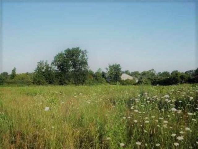 1386 Homestead, Flint, MI 48507 (MLS #50016220) :: Scot Brothers Real Estate