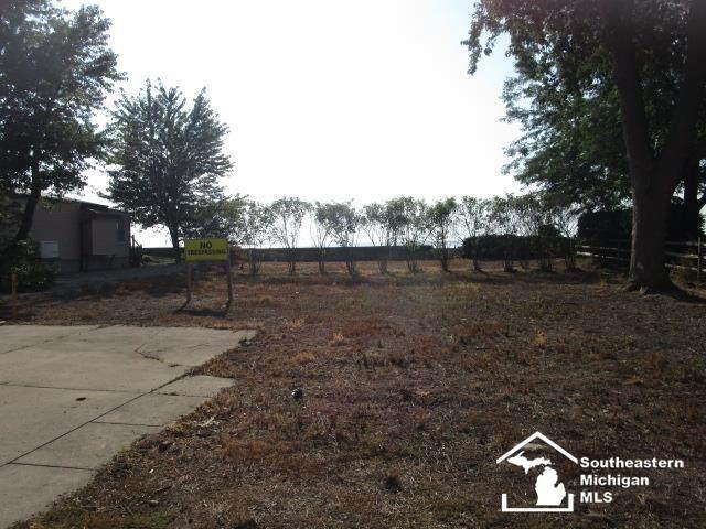 1350 Venetian, Monroe, MI 48161 (MLS #50044702) :: The BRAND Real Estate