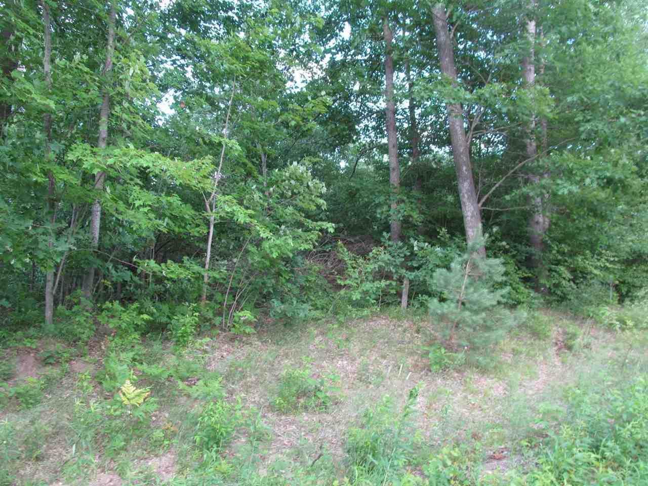 Lot 16 Pond Side Drive - Photo 1